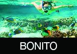 BONITO/MS: Aéreo + Hotel c/ Café