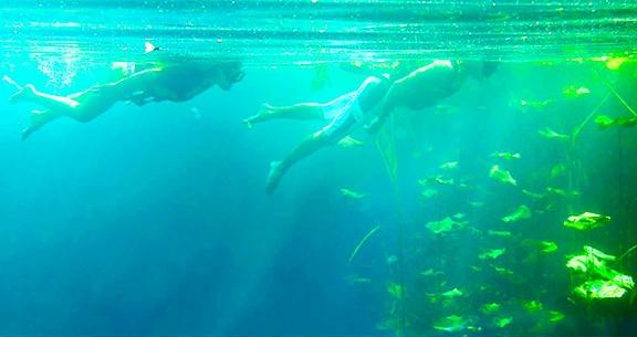 Cenotes Oásis Maya