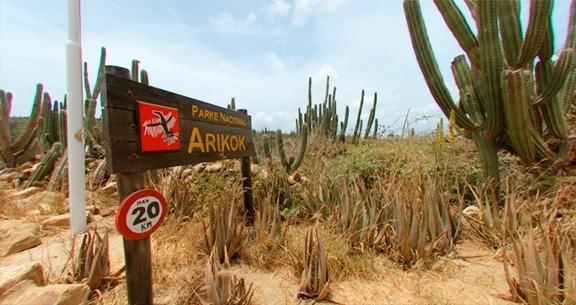 Parque Nacional de Arikok
