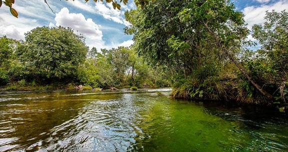 Embarque na EXPEDIÇÃO ao JALAPÃO: Natureza e Aventura!