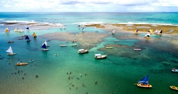 5 Nts: PORTO DE GALINHAS + Maragogi + Recife e OLINDA!
