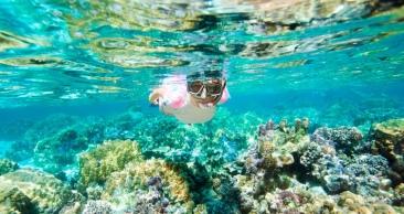 CURAÇAO no CARNAVAL com 6 Noites + Mergulho de Snorkel!!!