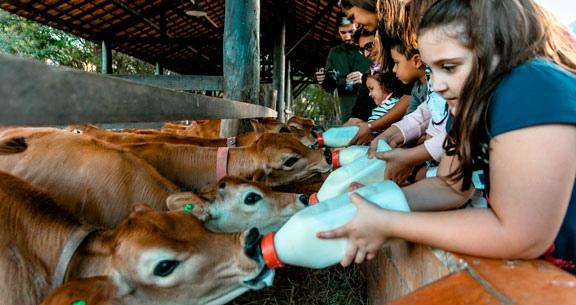 JÁ ABERTO: Fazenda VALE DA MANTIQUEIRA com Refeições