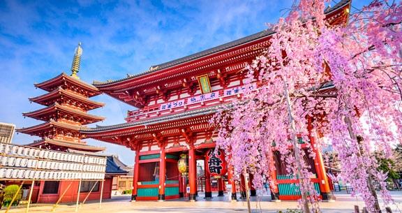 11 Noites: JAPÃO e CORÉIA do SUL em CRUZEIRO MSC + Tóquio