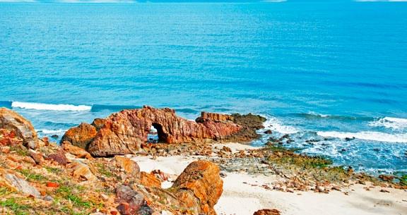 BEACH PARK com Acesso ILIMITADO ao Parque + JANTAR