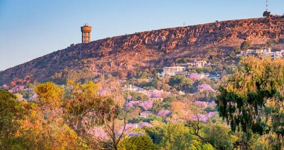 CARNAVAL na ÁFRICA DO SUL com Cidade do Cabo + SAFARI